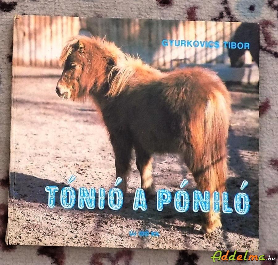 Gyurkovics Tibor: Tónió, a póniló (1990)