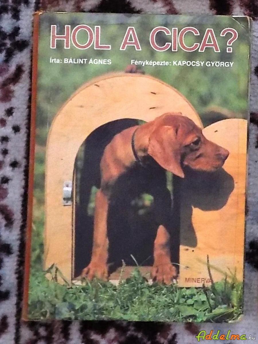 Bálint Ágnes: Hol a cica (Minerva 1982)
