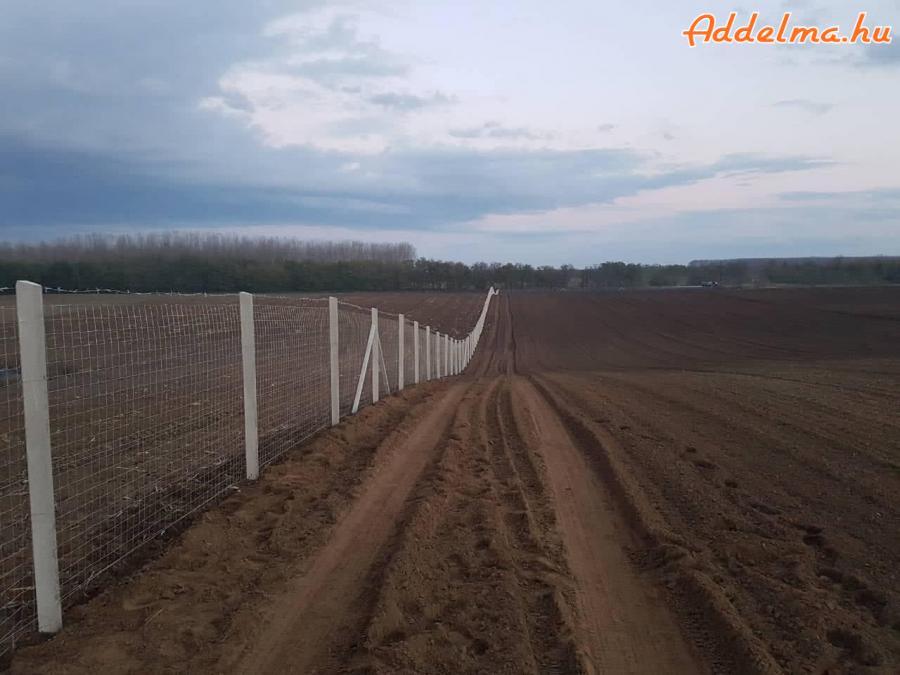 vadháló,huzal, betonoszlop, drótfonat,kerítés