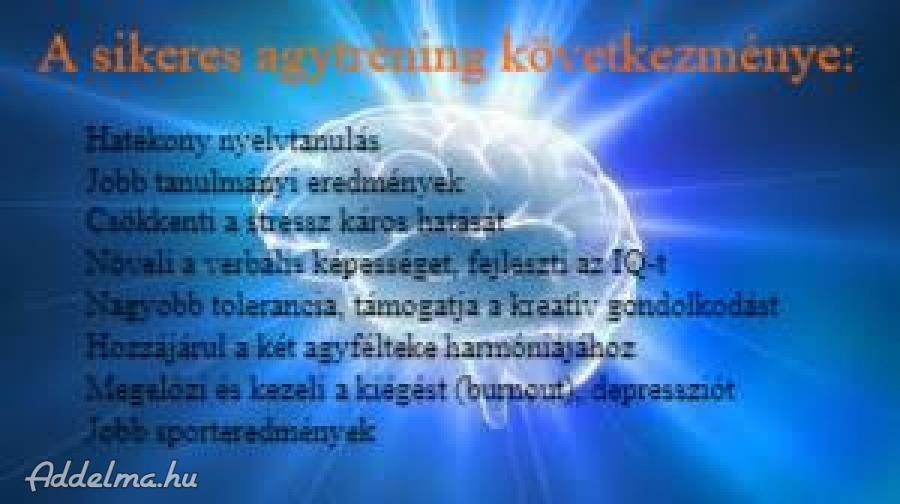 Német, szerb, angol nyelvoktatás, tréningek, tolmácsolás