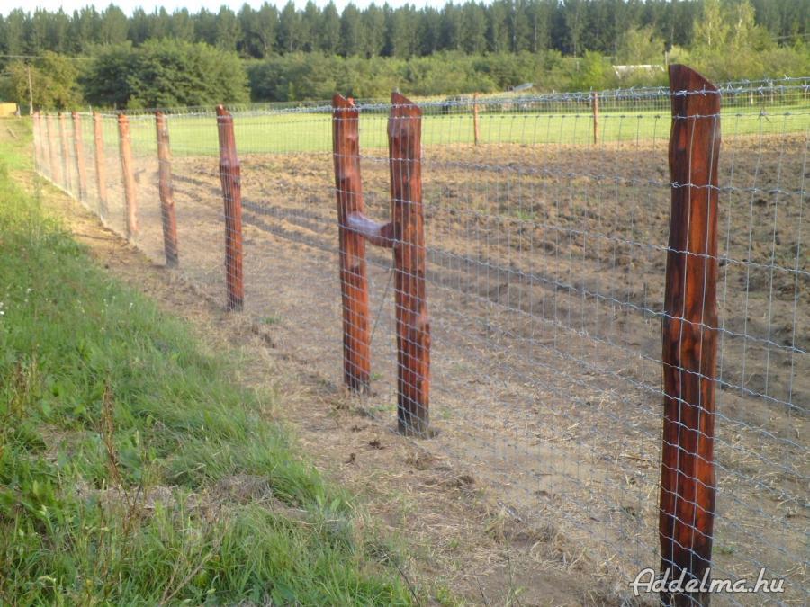 Vadháló,drótfonat,kerítés ,akác oszlop,vadriasztó huzal