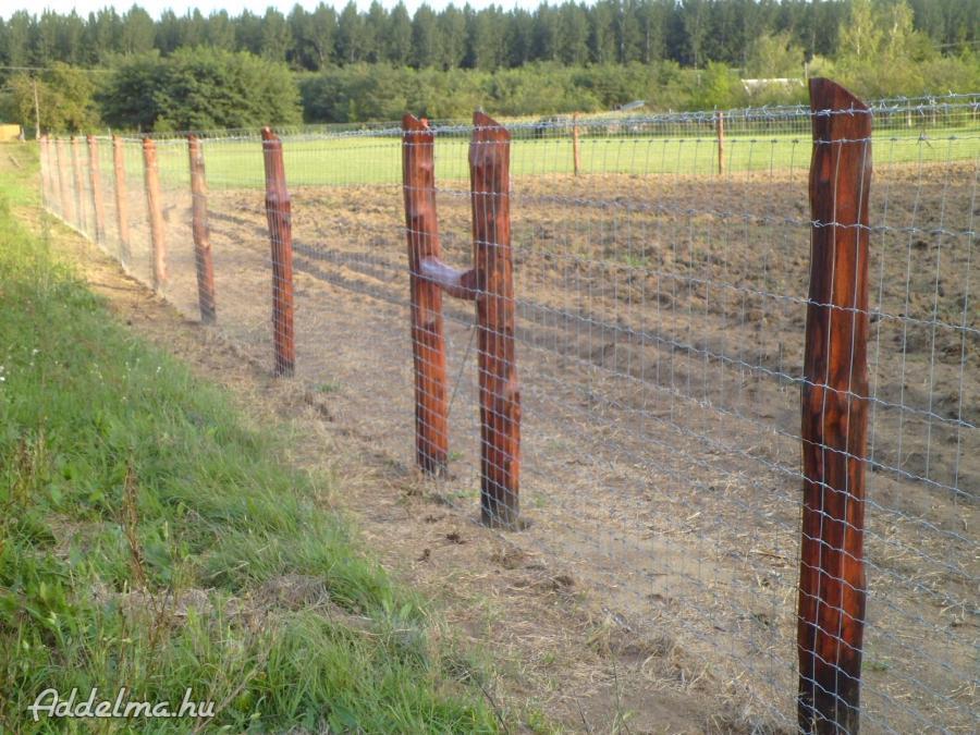 Vadháló,drótfonat,kerítésdrót